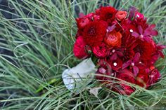 red roses, red dahlias, red ranunculus, red mokara orchids Gorgeous!