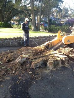 Tree Stump surrounded by asphalt. No problem! Tree Stump, Grinding, Hiking Boots, Ribbons