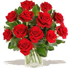 Twelve Stolen Kisses Delivering for Valentines Day UK Wide FREE Gift Card & Message Included £4 OFF Ordering Online Dozen Red Roses, Red Rose Bouquet, Gifts Delivered, Flowers Delivered, Free Gift Cards, Cupid, Floral Arrangements, Valentines Day, Kisses