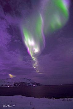 Northern Lights - Rekvik outside Tromso, Norway