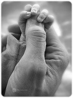 Main dans la main ... enfin presque. by A.G. Photographe, via Flickr