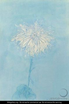 Chrysanthemum - Piet Cornelis Mondrian