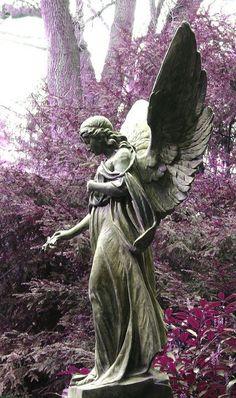 Friedhof Angel photos et images sur fotocommunity