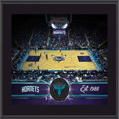 dbb54d8b0 Charlotte Hornets Fanatics Authentic 10