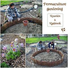 Permaculture Gardening - Willow Woven Raised Bed