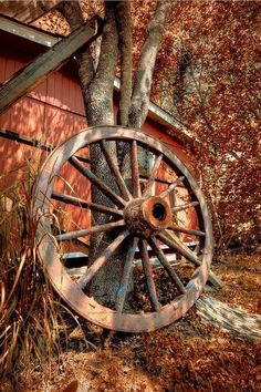 Country Living ~ old wagon wheel Country Charm, Country Life, Country Girls, Country Living, Country Bumpkin, Country Roads, Vieux Wagons, Old Wagons, Autumn Scenes