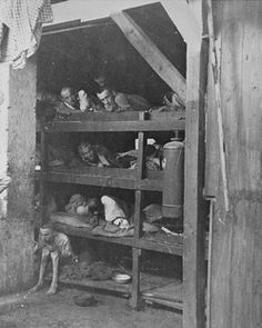 4/11/1945, Liberation of Buchenwald Concentration Camp, Testimony of Ludwig Scheinbrunn, survivor of Buchenwald