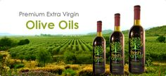 Premium extra virgin olive oils - Aged Balsamic Vinegars– Fresh Harvest.  Incredible difference between this and what you buy in the grocery store.