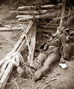 Spotsylvania Court House, Virginia,vicinity. Body of a Confederate soldier near Mrs. Alsop's house. It was made in 1864 by O'Sullivan, Timothy H., 1840-1882.
