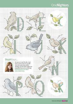 alphabet with birds