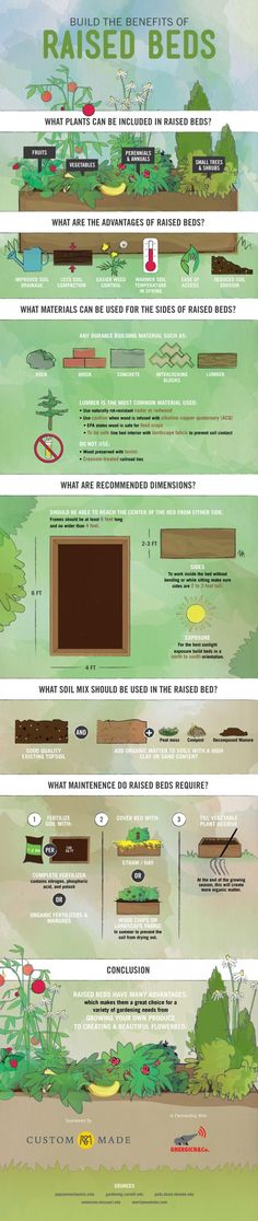 Gardening in Raised Beds Infographic.  Informative, simple and helpful.