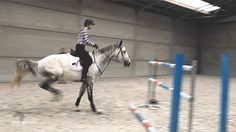 cjriding:  heels-down:  rider: heels-down  lets talk about the fact that this is literally a 1.55m vertical…he unreal  That.hind.end