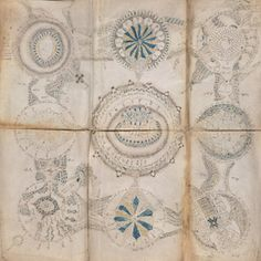 The curious case of THE VOYNICH MANUSCRIPT Untranslated. Unreadable. Unbelievably fascinating. Potentially a time-capsule of creativity. #NewYorker #Articles