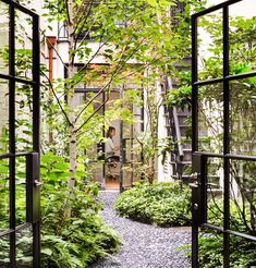 Back yard garden of Upper East Side house. StevenHarrisArchitects