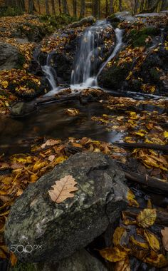 Autumn leaf - Focus stacked from 3 pictures focused on: -the rock in the foreground, -on the waterfall, -on the trees at the background. Processed via Lightroom Classic CC, Stacked in Photoshop CC.
