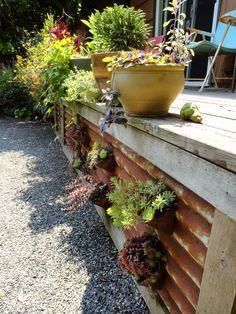 Deck skirt, Karen Schwartz's garden, Portland, OR.  Danger Garden: Pollinator paradise and fun for people too...