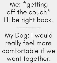 I Love Dogs, Puppy Love, Funny Animals, Cute Animals, Dog Lady, Dog Rules, Animal Quotes, Girls Best Friend, Dog Mom