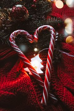 Cosy Christmas, Christmas Feeling, Christmas Wonderland, Christmas Holidays, Merry Christmas, Christmas Decorations, Outdoor Christmas, Christmas Crafts, Xmas Wallpaper