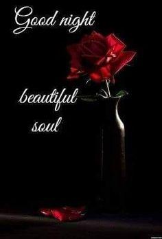 Beautiful souls❣️❣️❣️
