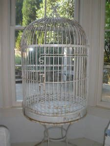 Another vintage bird cage that Erin would love!