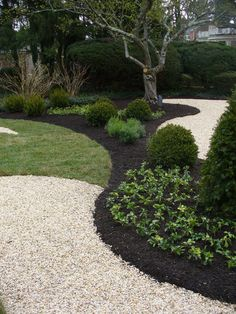 I love the curve where the different textures meet and I love the use of rock, grass and black mulch.