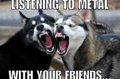Listening to metal with your friends
