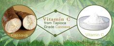 Vitamin C supplier-Xi'an Shengtian Biological Engineering Co., Ltd.