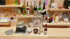 Cute tiny hamsters running their own businesses (19 pics)