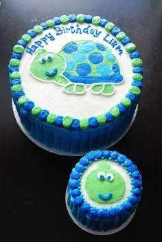 Turtle Cake with Mini Smash Cake - by Razzberry Cakes