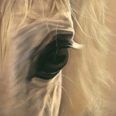 Spirit of Horse Art | Equine Art | Paintings | Gifts