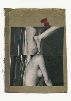 foxesinbreeches: Single cuts (18) by Katrien de Blauwer Also