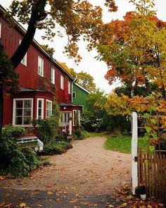 These houses  #vallila #autumn #fallcolors #kumpulanlaakso #kumpula #woodenhouses #myhelsinki #helsinki #ig_helsinki #helsinkiofficial #visithelsinki #ourhelsinki #visitfinland #ig_finland #explorefinland #discoverfinland #ourfinland #thisisfinland #finland_photolovers #thebestoffinland #igersfinland #igscandinavia #nordicphotos #nordic