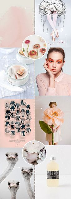 moodboard by a.degenaar, via Flickr