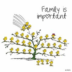 I love my family ❤️