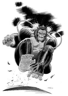 Gorilla Grodd - Chris Ring