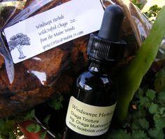 Chaga Mushroom Tincture 1oz & Dried Chaga 2oz by WindsweptHerbals, $15.00