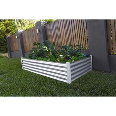 Find The Organic Garden Co 200 x 100 x Zinc Raised Garden Bed at Bunnings Warehouse. Visit your local store for the widest range of garden products. Fast Growing Plants, Growing Tree, Artificial Hedges, Privacy Plants, How To Make Terrariums, Fence Planters, Large Plants, Plant Wall, Outdoor Areas