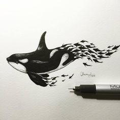 This drawing reminds me of how depletion of fish stocks leads to the devastation of orca populations. Art And Illustration, Illustrations, Animal Drawings, Cool Drawings, Drawings Of Fish, Whale Sketch, Fish Sketch, Whale Drawing, Whale Tattoos