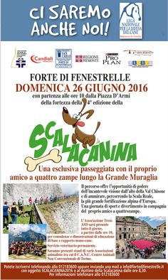26/6 i #volontari della #LNDC #Torino vi invitano alla Scalacanina passeggiata a #6zampe