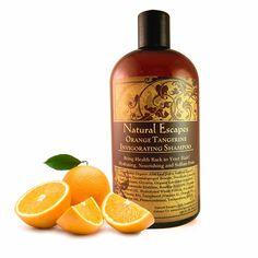 Orange & Tangerine Invigorating Shampoo LARGER 16oz SIZE!