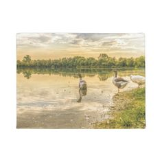 Early Rising Geese Doormat - home gifts ideas decor special unique custom individual customized individualized