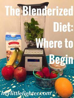 The Blenderized Diet: Where to Begin