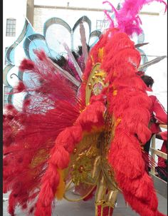 Feathered costumes at Brooklyn's West Indian American Labor Day Parade, 2013. Image © E. Freudenheim