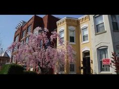 Learn about life in the U Street neighborhood in this great video from @Real Living  | At Home!