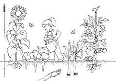 Download als PDF: Natur – Garten Gartenarbeit Gemüse