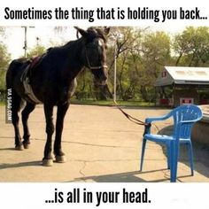 So deep even that horse can't find it