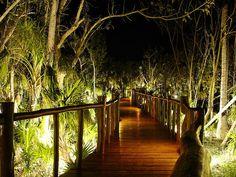 Lighted Walkways