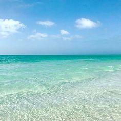 Who's ready for a little beach time?  : @followmetolongboatkey . . . . . #blues #weekend #longboatkey #loveflorida #staysaltyflorida #floridalife #visitflorida #lovefl #beach #beautiful #nature #gulfcoast #exploremore #florida #nature #saltlife #beachlife #ocean #vacation #happy #paradise #seashells #explore #beautifuldesinations #love #yoga #wanderlust #liveauthentic #bestvacations