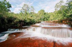 Parque Estadual do Jalapão - Tocantins (by Fundação Grupo Boticário)