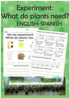 FREE--Plants experiment What do plants need? Science, Spanish, Spring Grade Levels 1st, 2nd, 3rd, 4th, 5th, 6th   Worksheets, Handouts, Laboratory Use this data sheet for your next plants experiment with your students. Everything in Spanish. Use this worksheet to fill in when your students learn what plants need. English and Spanish